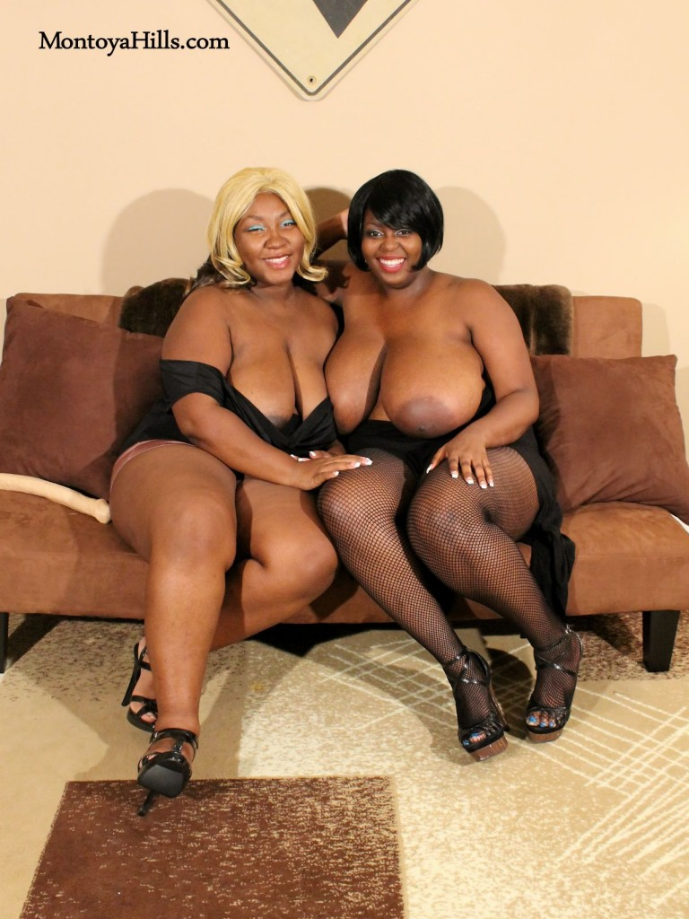 Montoya Hills and Timeka Taylor are two big tit ebony milfs ready for fun.