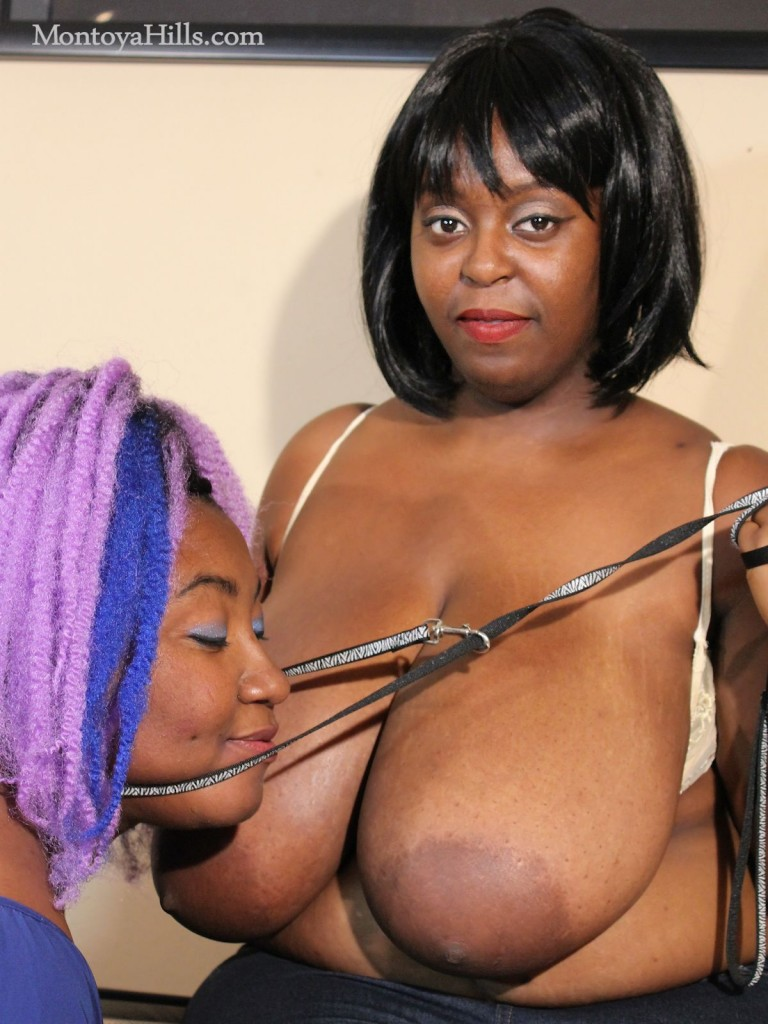 Big it ebony Mistress, Montoya Hills is training her black slave.